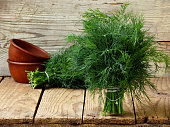 bunch of dill on wooden background