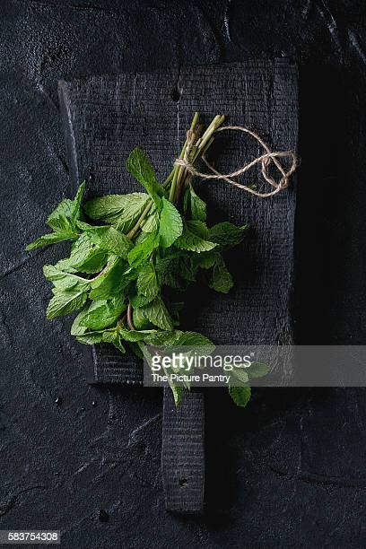 Bunch of fresh mint
