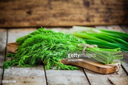 Bando de endro fresco com cebola Verde Orgânico : Foto de stock