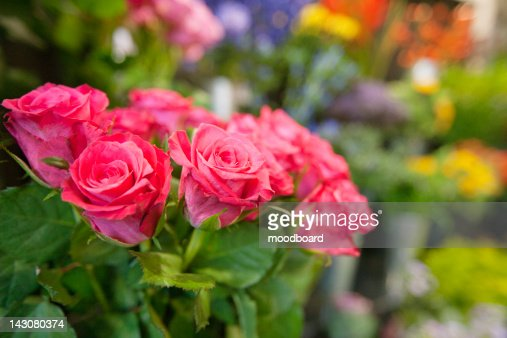 Bunch of fresh roses at flower shop : Stock Photo