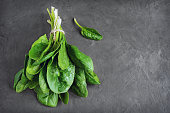 Bunch of fresh spinach on black background