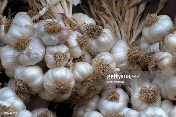 Bunch of garlic heads on sale at Kastamonu, Turkey