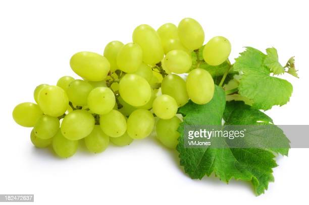 Bunch of Green Grapes Isolated