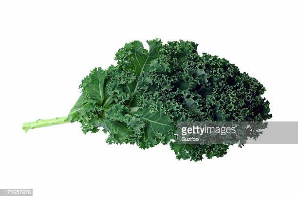A bunch of green kale on a white background