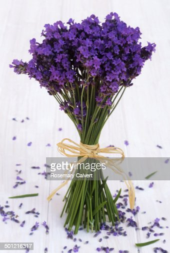 Bunch of lavender with fallen flowers beneath