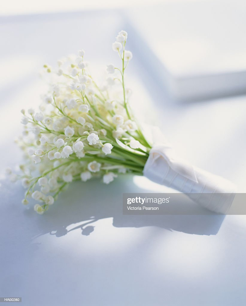 Bunch of lily of the valley (Convallaria majalis), close-up : Stock Photo
