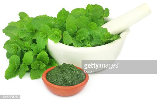 Bunch of mint leaves in a mortar with ground paste : ストックフォト