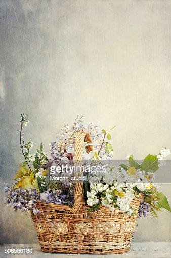 Bündel von mix Frühling Blumen : Stock-Foto