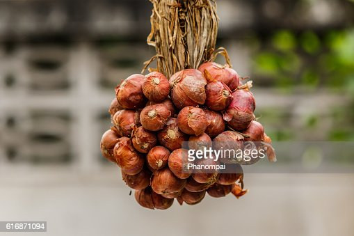 Bunch of onions in a clump of colorful cooking Thailand. : Stock Photo