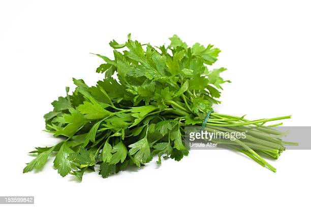 bunch of parsley