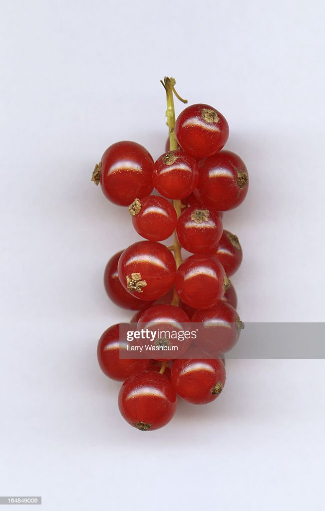 A bunch of red currants, close-up : Stock Photo