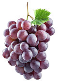 Bunch of red grapes. File contains clipping paths.