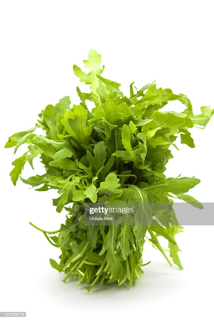 bunch of rucola : Stock Photo