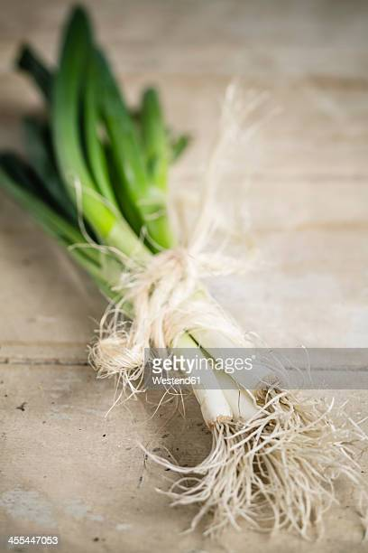 Bunch of spring onions tied with string, close up