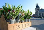 Bunches of lily of the valley are pictured on May 1 2013 in the northern France village of Locon At the beginning of the 20th century it became...