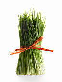 Bundle of wheat grass on white background