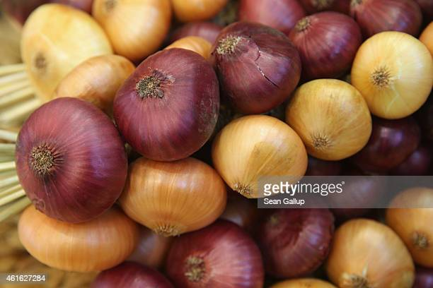 Bundled purple and white onions lie on display at the International Green Week agricultural trade fair on January 16 2015 in Berlin Germany The...