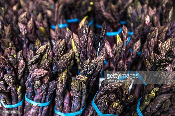 Bundles of purple asparagus