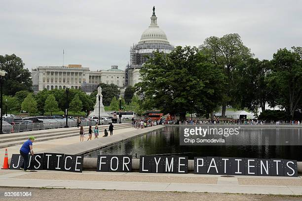 Bunny Woloszczak of Hurleyville New York places a protest sign near the US Capitol Reflecting Pool as part of a 'We The People Rally' to bring...