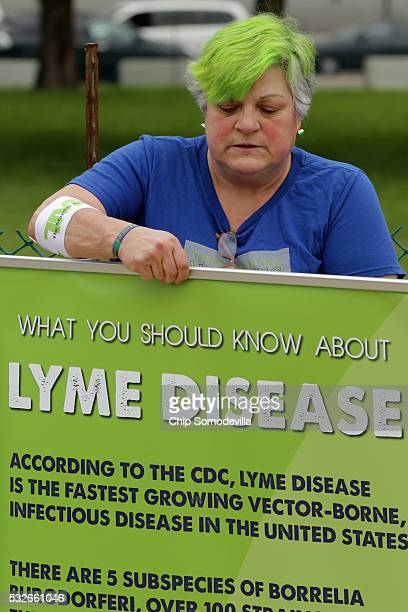 Bunny Woloszczak of Hurleyville New York works to display informational posters about Lyme Disease near the US Capitol Reflecting Pool May 19 2016 in...