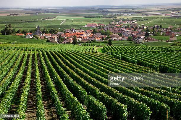 Région de Bordeaux