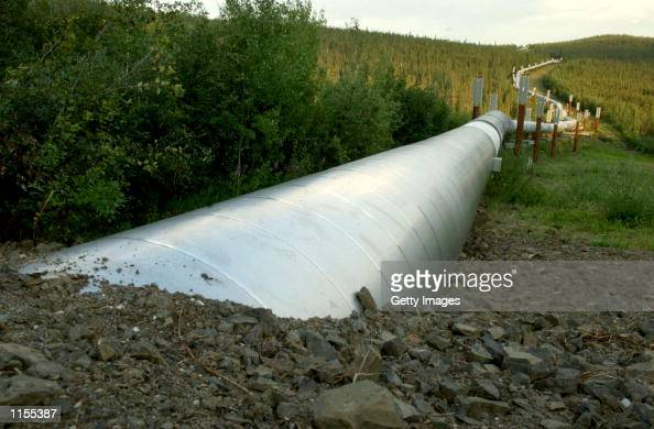 A buried section of the TransAlaska Pipeline emerges a few miles north of the Yukon River on July 21 2002 in Fairbanks Alaska The 800 mile pipeline...