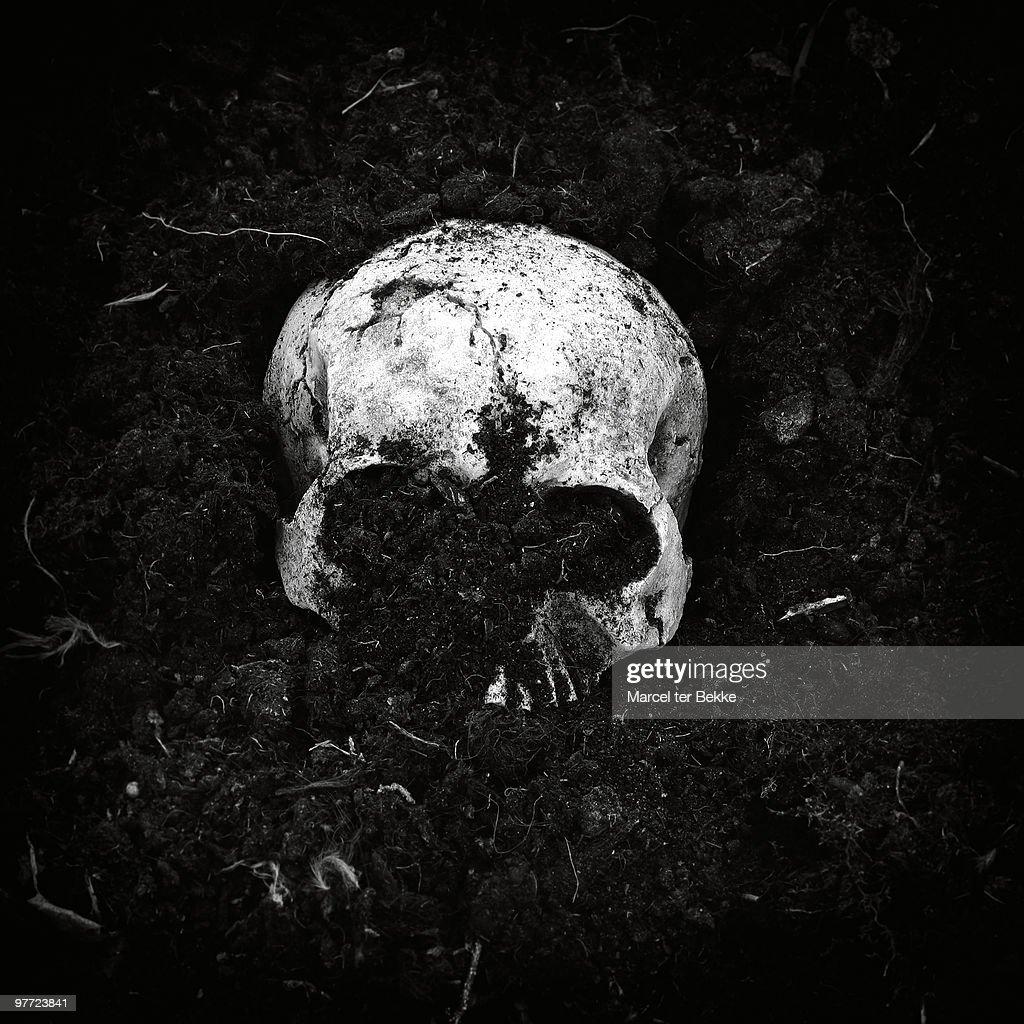 Buried skull