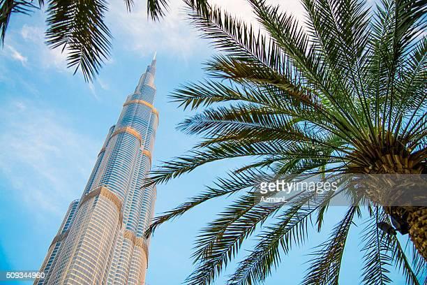 Burj Khalifa tower and palm trees, Dubai