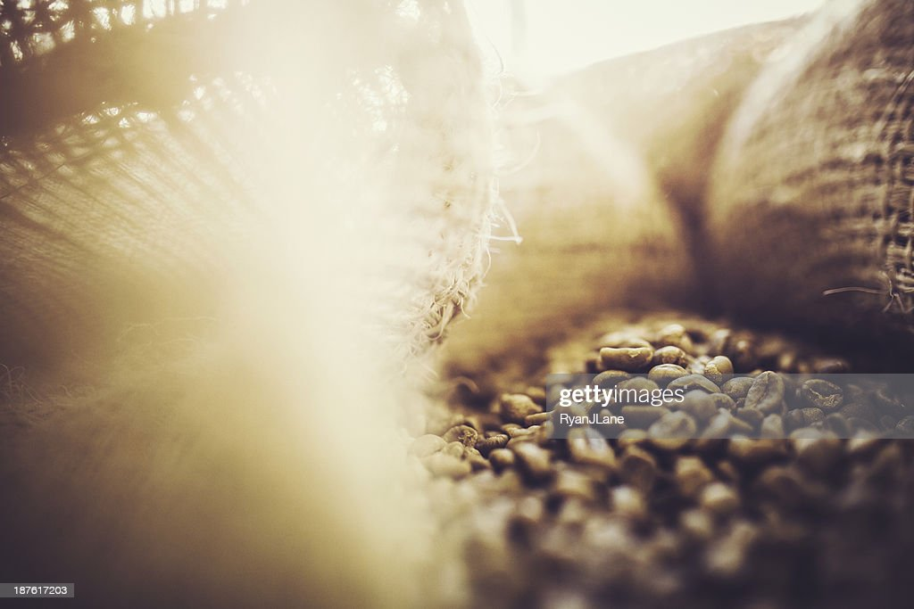 Burlap Bags of Green Coffee Beans