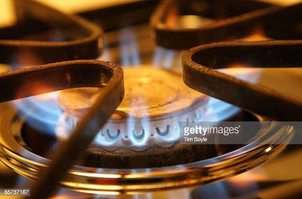 A Burner On Stove Emits Blue Flames From Natural Gas September 21 2005 In Des