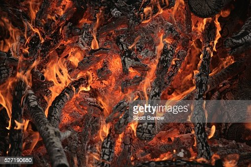 Burning branches : Stock Photo