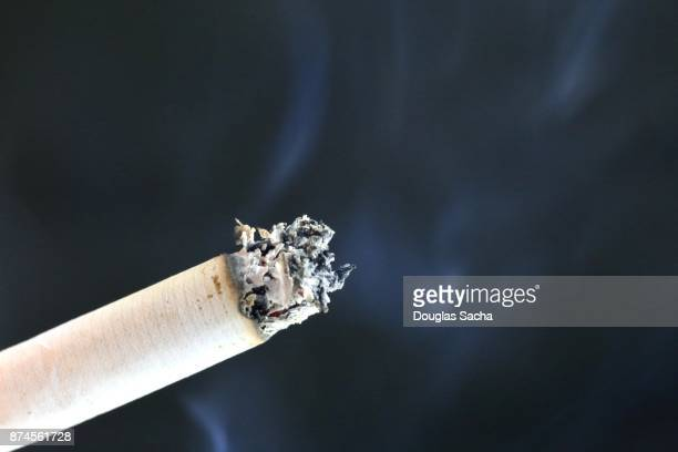 Burning Cigarette with smoke and ash