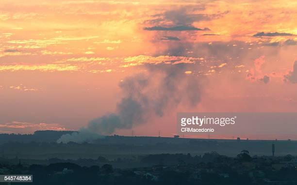 Burning of sugarcane.