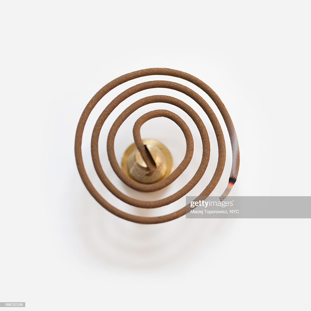 Burning spiral incense on white background.