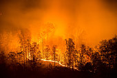 A wildfire burns uphill in the Appalachian Mountains