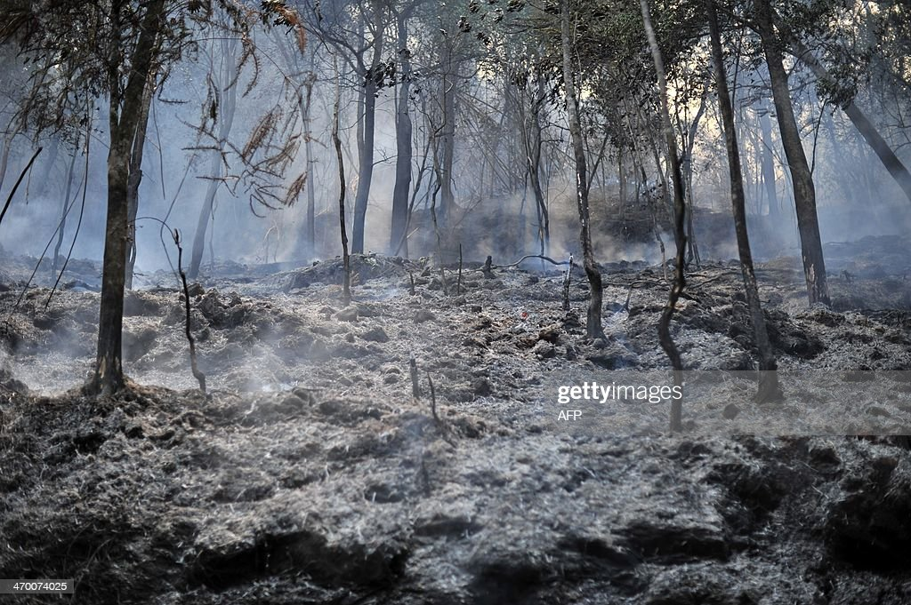 Burnt bushes smoke after a fire in Taman Bukit Melawati park in Kuala Lumpur on February 18, 2014. There were 312 bush fires reported nationwide on February 12 in just 24 hours during a dry spell this month in Malaysia, local media reported.