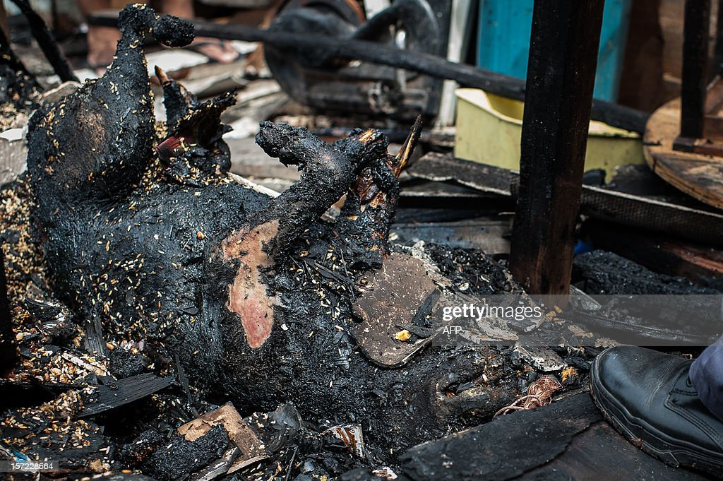 A burnt dog by a fire is seen at Paraisopolis shantytown in Sao Paulo, Brazil on November 30, 2012. According to the city's fire department, no casualty was reported and around 30 homes were burnt. AFP PHOTO/Yasuyoshi CHIBA