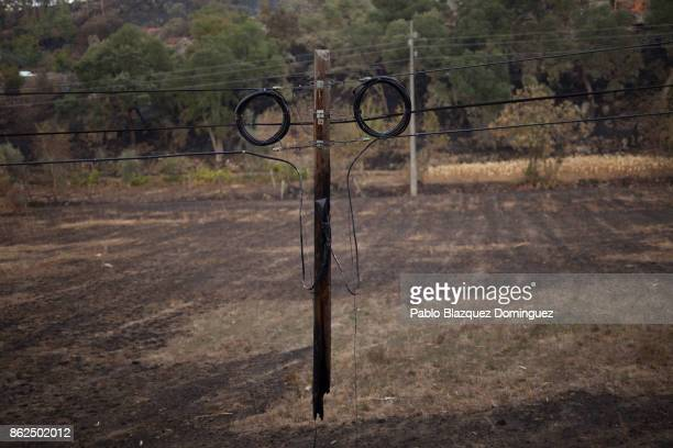 A burnt electric post hungs from the cables in the village of Vila Nova near Vouzela on October 17 2017 in Viseu region Portugal At least 41 people...