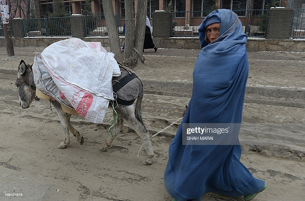 A burqa-clad Afghan woman walks with her donkey on a cold day in Kabul on January 8, 2013. Despite Afghanistan receiving billions of dollars of aid since 2001, more than 100 children died last year during the harshest winter in two decades, and the UN refugee agency UNHCR has co-ordinated efforts to reduce repeat fatalities. AFP PHOTO/ SHAH Marai