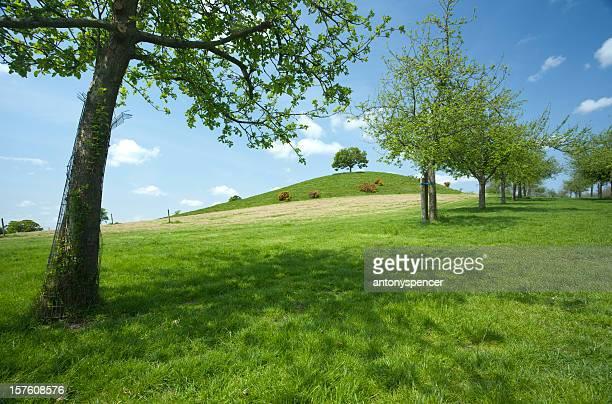 Burrow Hill, Somerset
