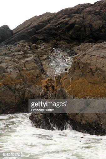Burst of Water : Stock Photo