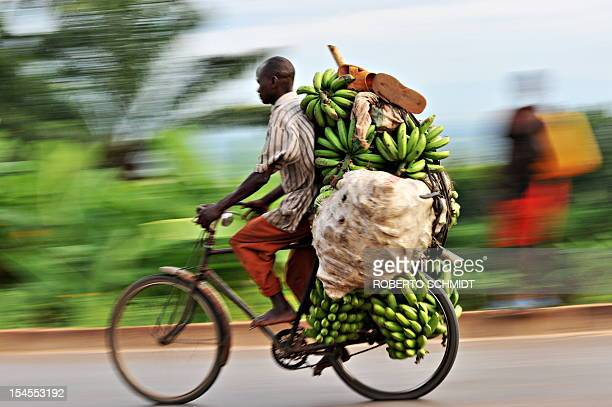 Burundian cyclist who makes a living from transporting goods to Burundi's capital Bujumbura for sale steers his heavily loaded bike downhill...