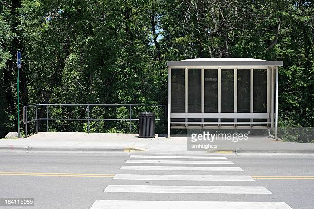 Bus shelter with crosswalk and forest