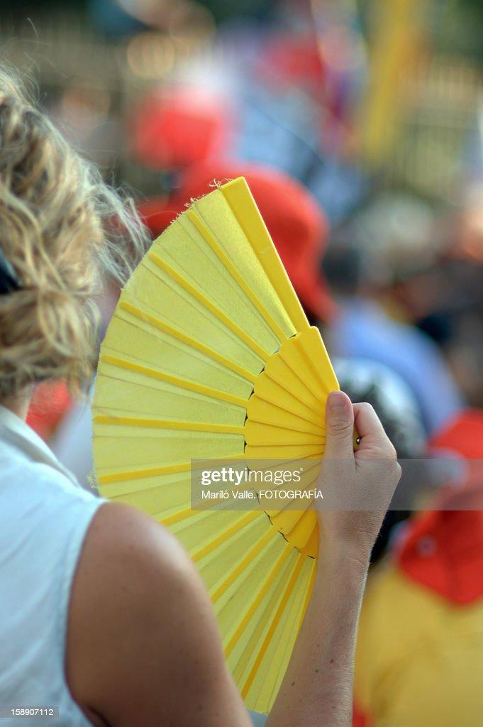 Buscando el amarillo.... : Stock Photo