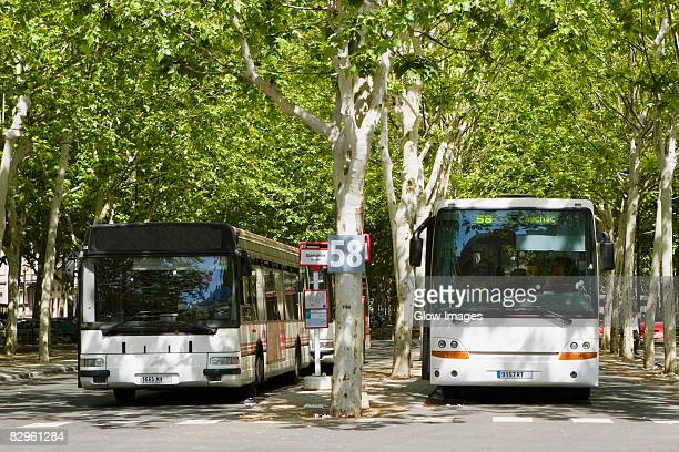 Buses on the road, Quinconces Station, Bordeaux, Aquitaine, France