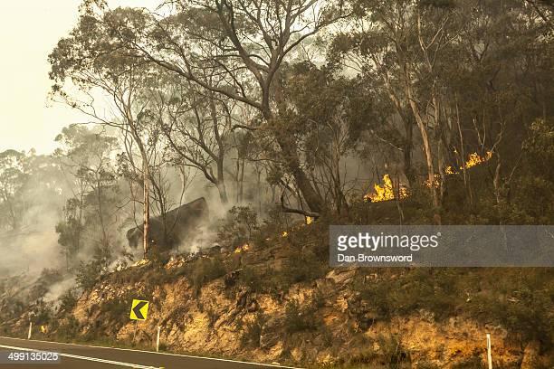 Bush fire, New South Wales, Australia