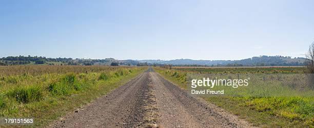 Bush Track Panorama