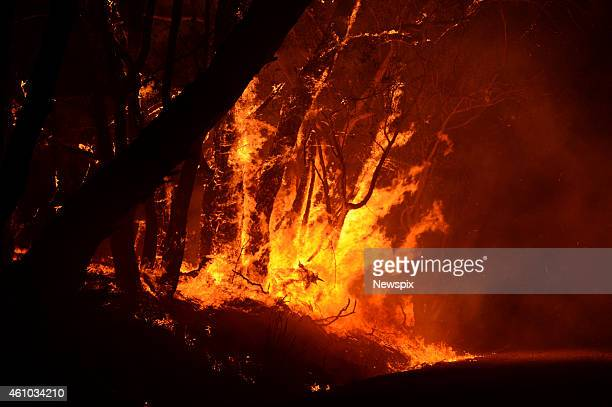 A bushfire on Wattle Road in Kersbrook on January 2 2015 in Adelaide Hills Australia
