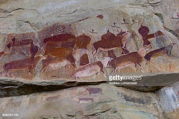 Bushmen or San cave art depicts the sacred Elan and dancers painted on the rock with Eland blood by shaman and preserved by the South African...