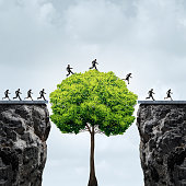 Business growth opportunity concept as a group of business people taking advantage of a tall tree grown in time to create a bridge to cross over and link two seperate cliffs as a motivation metaphor f